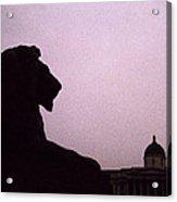 Lion Of London Acrylic Print