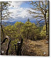 Trail At Cathedral Hills Acrylic Print