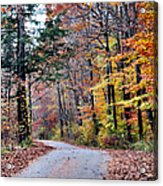 Trail Enlightenment Acrylic Print