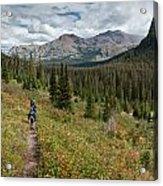Trail Through Bear Country Acrylic Print