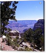 Trail To The Canyon Acrylic Print