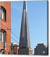 Transamerica Pyramid Tower In San Francisco . 7d7376 Acrylic Print
