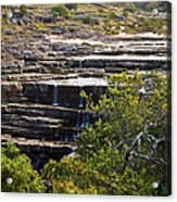 Transkei Terrace Acrylic Print by Miguel Capelo