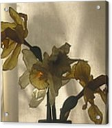 Translucent Acrylic Print