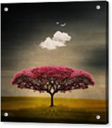 Tree And Clouds Acrylic Print