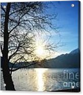 Tree And Lake Acrylic Print