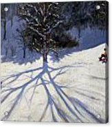 Tree And Two Tobogganers Acrylic Print by Andrew Macara
