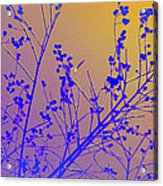 Tree Art Acrylic Print
