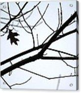 Tree Art Two Acrylic Print