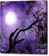 Tree Branch In Purple Moonlight Acrylic Print