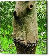Tree Face Acrylic Print