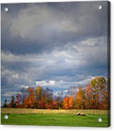 Tree Line On Sunset Hill In New Hampshire Acrylic Print