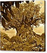 Tree Of Life In Sepia Acrylic Print