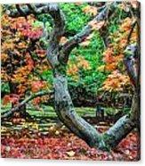 Tree Of Life Acrylic Print by Sarai Rachel