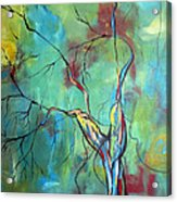 Tree Of Winding Color Acrylic Print