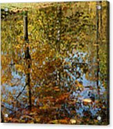 Tree River Reflections Acrylic Print