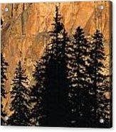Tree Silhouettes In Front Of Cliff Face Acrylic Print