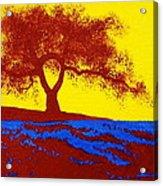 Tree Study 1 Acrylic Print