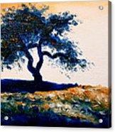 Tree Study 4 Acrylic Print
