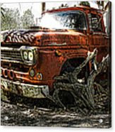 Tree Truck Acrylic Print