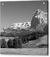 Treeline Across Alpi Di Siusi In The Dolomites Acrylic Print