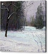 Trees In A Winter Fog Acrylic Print