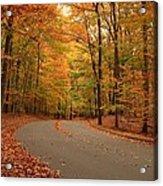 Trees Of Autumn - Holmdel Park Acrylic Print by Angie Tirado