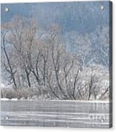 Trees On A Frozen Lake Acrylic Print