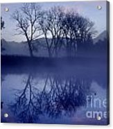 Trees On The Lake Front Acrylic Print