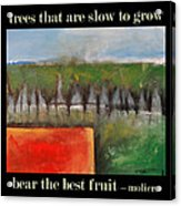 Trees That Are Slow To Grow Poster Acrylic Print