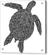 Tribal Turtle IIi Acrylic Print by Carol Lynne