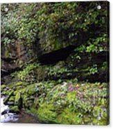 Trickle Of Green Acrylic Print