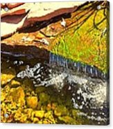 Trickle Waterfall Acrylic Print