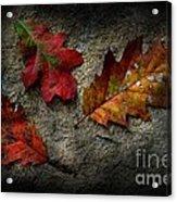 Trifecta Acrylic Print