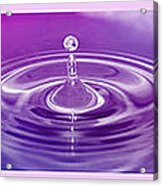 Triptych Water Drops In Purple And Pink Acrylic Print