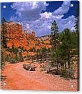 Tropic Canyon In Bryce Canyon Park Acrylic Print