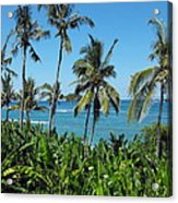 Tropical Delight Acrylic Print