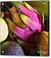 Tropical Fruit 3- Dragonfruit Arrangement Acrylic Print