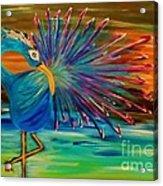 Tropical Peacock Acrylic Print