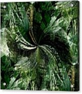 Tropical Rain Forest Acrylic Print