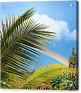Tropical Rainbow Acrylic Print