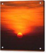 Tropical Sun V3 Acrylic Print