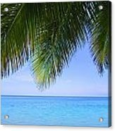 Tropical View Acrylic Print