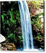Tropical Waterfall And Pond Acrylic Print