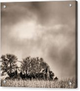 Trouble Brewing II Bw Acrylic Print by JC Findley