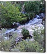 Trout Creek Acrylic Print