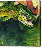 Trout In Hand Acrylic Print