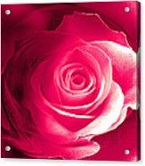 True Love Amore Vero Acrylic Print