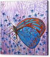 Trust Butterfly Acrylic Print