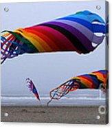 Go Fly A Kite 9 Acrylic Print